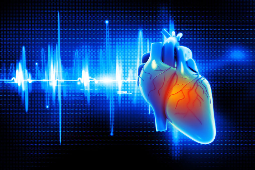 Благодаря специальным клеткам и собственной электропроводящей системе сердце работает в определенном ритме и последовательности